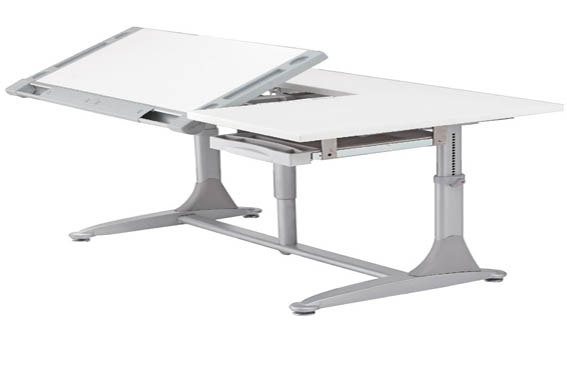 The Adjustable Desk Platform
