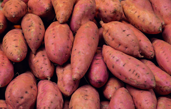 The New Tricks of the Sweet Potato High-yielding, the Key to Fertilization during the Expansion Period, Simple and Practical!